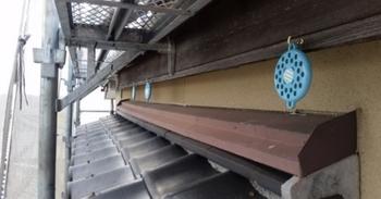 半田市で鳥避け設置