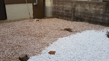 東区で草刈りと伐採と防犯砂利敷き